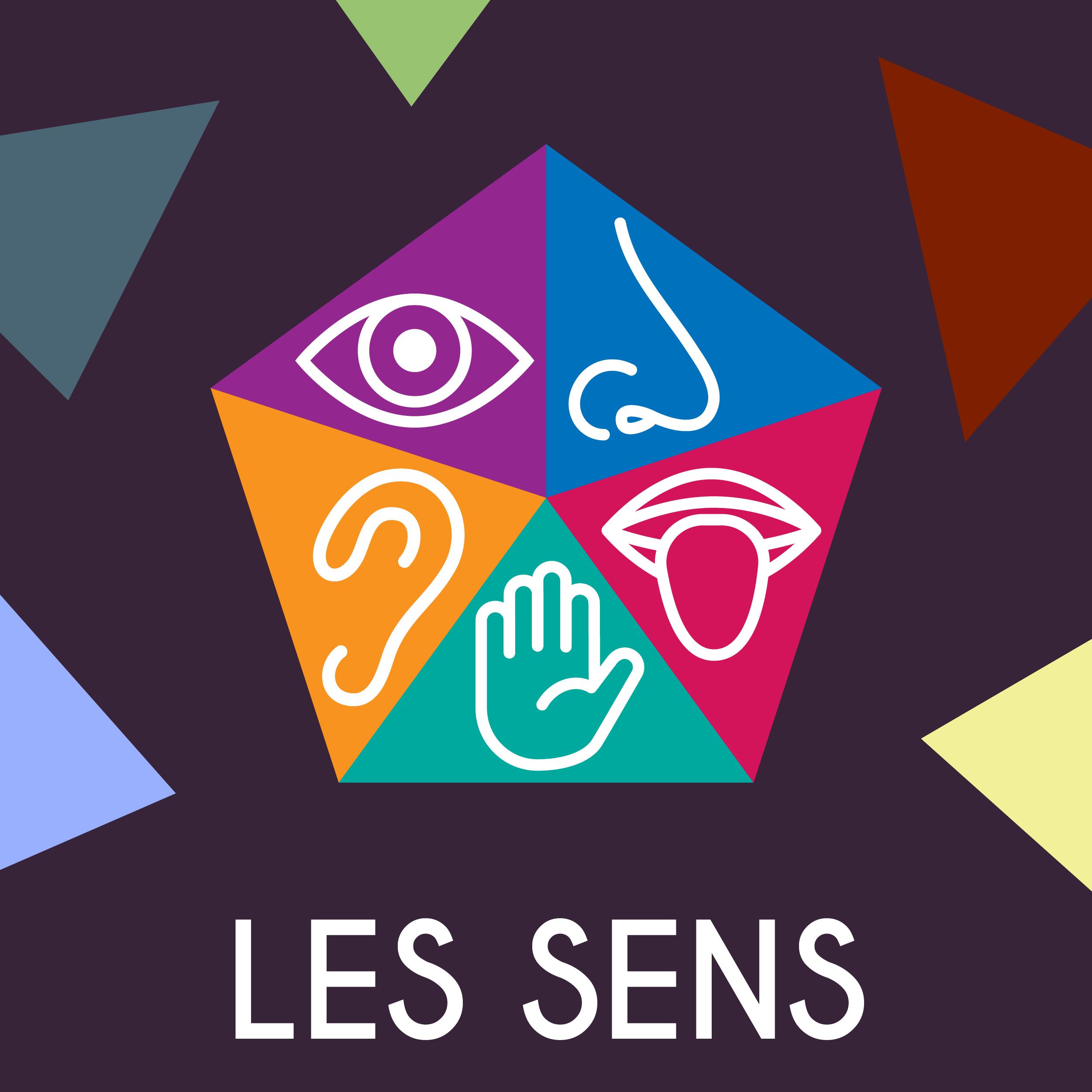LS_site web pictos_5 sens
